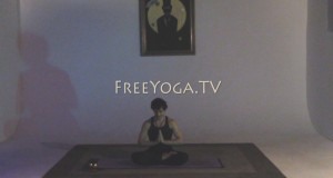 Full-hr-Restorative-Yoga-for-Lucid-Dreaming-Class-with-Stephen-founder-of-FreeYoga.TV_